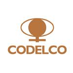 codelco-aliservice